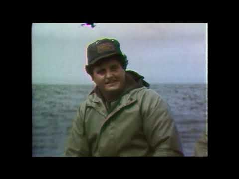 Land & Sea: The Inshore Fishery Fails On The Bonavista Peninsula