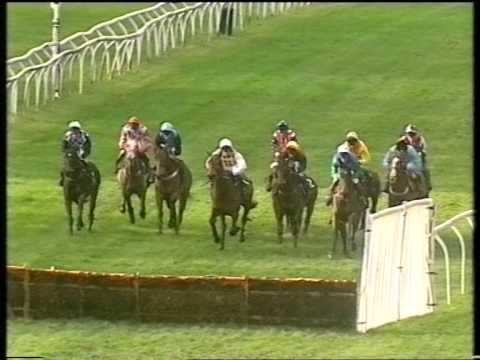 1998 Equity Financial Collections Gerry Fielden Intermediate Hurdle