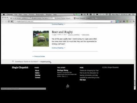 Quick Critique: SingleChopstick.com [WPVC017]
