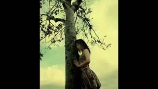 اجمل اغاني حزين كردية مع المبدع شهيبان