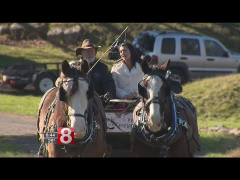 East Haddam farm offers holiday horse and carriage rides