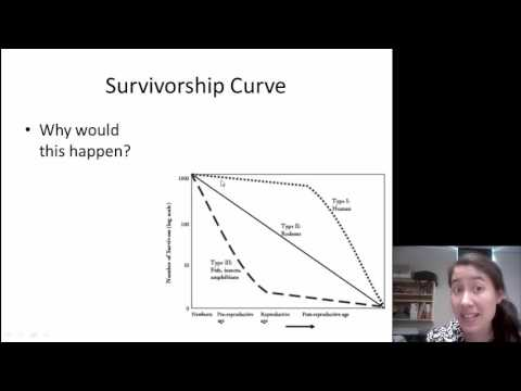 population growth activity biology answer key