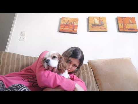 לחבק את הכלב עד שיימאס לו! איך הגיב ומי נשבר ראשון?