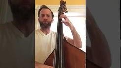 Justin Purtill bass - Bright Morning Blues