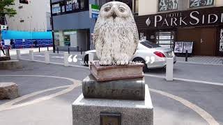 【Walking in Tokyo with WJT】IKEBUKURO, TOKYO April 7, 2021