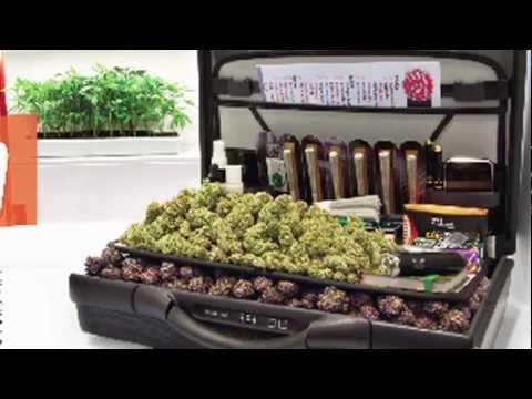 HIGH TIMES Medical Marijuana Magazine - Summer 2011