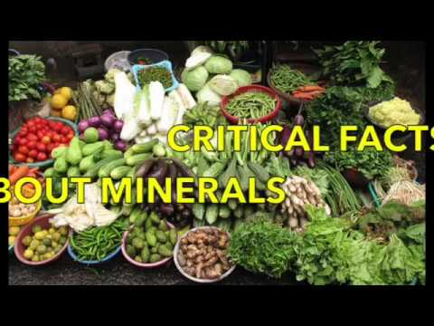 CRITCAL FACTS ABOUT MINERALS: VITAL HEALTH INFO