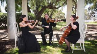 Best Day Of My Life - String Quartet - Eliana Strings