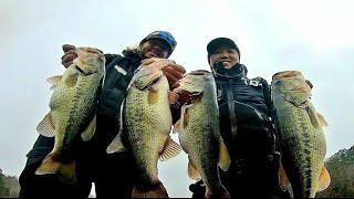 冬季钓鱼--低水温反应饵爆钓巨物!!