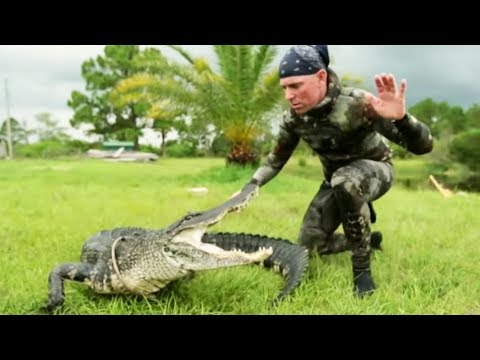 Gator Saved from Hunters Bullet | Gator Boys