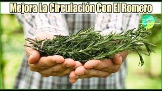 Herbales circulación remedios de