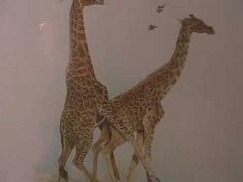 Giraffe love vlogbrothers