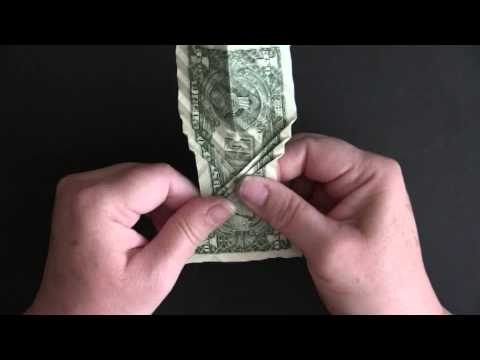 Folding Won Park's Dollar Koi