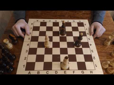 Шахматы. Урок 5 для начинающих. Шахматный король. Шах королю, мат королю