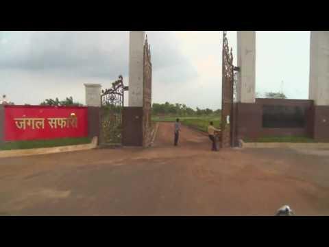 Hamar Chhattisgarh - Jungle Safari Tour