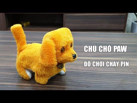 Chú Chó PAW TROL robot Đồ Chơi Biết Đi Chạy Bằng Pin - Toy Review