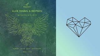 Alex Young & Deetech - Impressionante (Moe Danger remix)