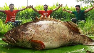 Unseen Biggest Fish BBQ Recipe  Big Tandoori Fish Recipe  Giant Fish Barbecue  Goliath Grouper