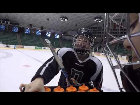 Dartmouth Women's Hockey 2014-2015 Season Video