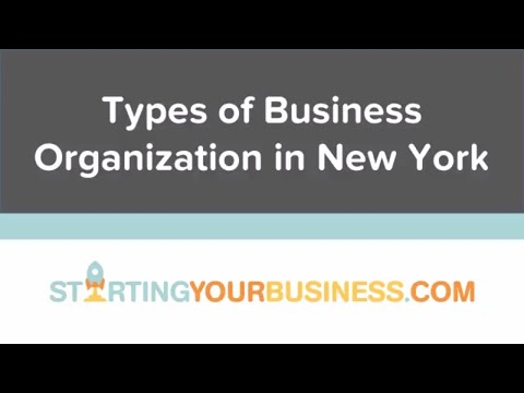 Types of Business Organization in New York - Starting a Business in New York