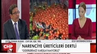 ÇETİN OSMAN BUDAK HALK HABER TV 22/02/2017