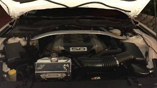 2015 + Ford Mustang Mishimoto Coolant Reservoir Tank