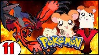 Pokémon X et Y : Un Hamtaro pas comme les autres ! :3 - épisode 11