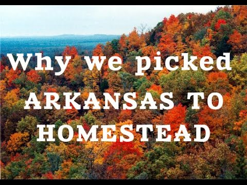 Why we picked Arkansas for our Homestead.