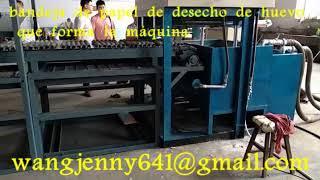bandeja de papel de desecho bandeja de fabricación de maquinaria-whatsapp:0086-15153504975