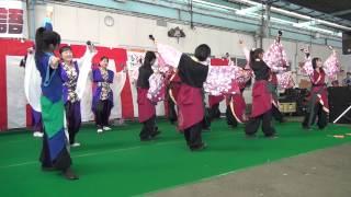 潮彩秋物語2013 総踊り フリーダム.