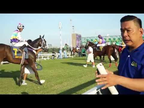 ม้าแข่งชิงถ้วยสภานายก ปีที่ 9 ระยะ 1,840 เมตร