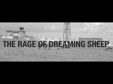THE RAGE OF DREAMING SHEEP