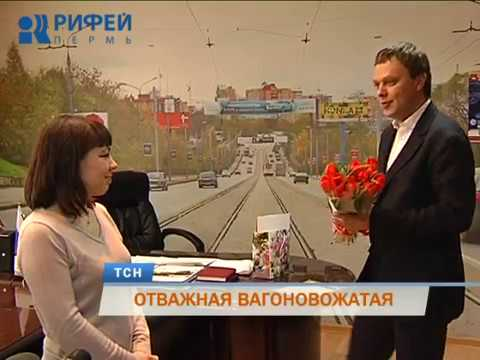 В Перми водитель трамвая спасла двух женщин от стаи собак