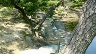 紀州・養翠園