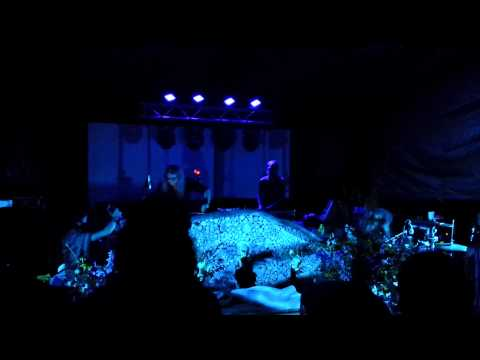 Random Rab Live Gratifly Music Festival 2014