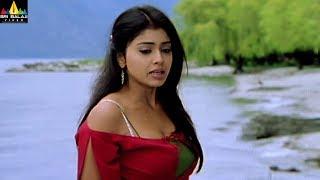 Shriya Scenes Back to Back | Naa Alludu Telugu Movie Scenes | Sri Balaji Video
