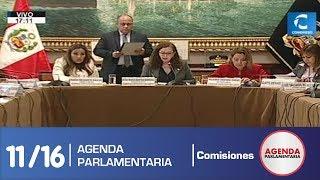 Sesión Comisión de Constitución 11 (19/07/19)