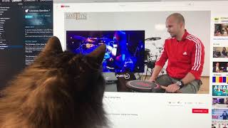 Gambar cover Cat Reacts to Drum Teacher Reacts to Dying Fetus