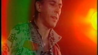 John Cale - Chinese Envoy Live