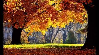 Ernesto Cortazar  -  Remembrance ( Autumn Song )