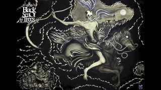Black Sea of Trees - Precipice
