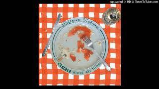 Cracker & Leftover Salmon - Mr Wrong