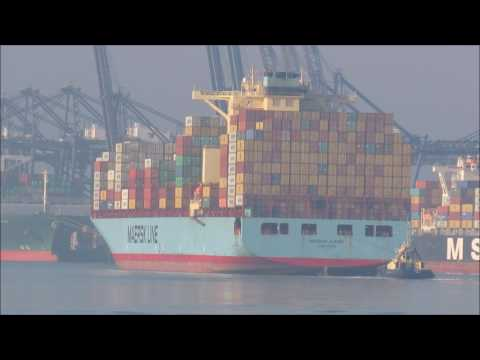 Maersk Alfirk appears the mist at Felixstowe with Svitzer Sky  22nd January 2017