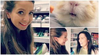 Audio Library Loony & Late Night Shopping with Gabby