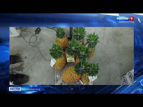 Калининградские таможенники не пустили в регион 1,5 тонны свежей плодоовощной продукции из Польши