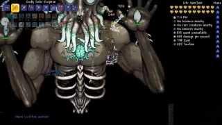Terraria 1.3 - #41: Moon Lord