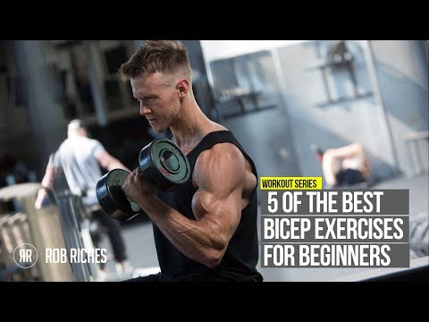 5 Beginner Bicep Exercises | Rob Riches