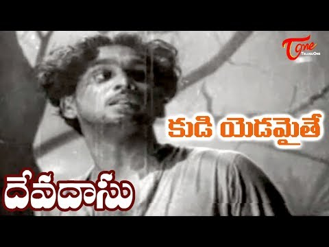 ANR Old Songs| ANR Devadasu Movie | Kudi Yadamaithe Song | ANR | Savitri - OldSongsTelugu