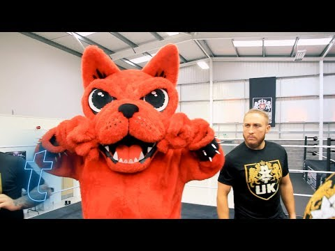 Download Festival's Download Dog trains with stars of WWE NXT | Ticketmaster UK