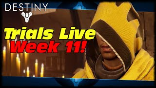 Destiny Trials Of Osiris Week 11! Swimming In Poop Water & Electrified Pool Carcasses!